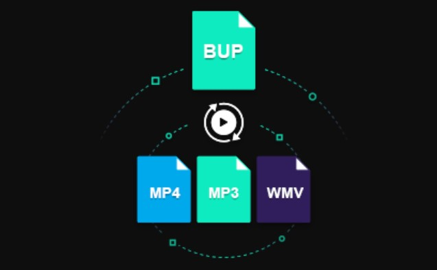BUP files