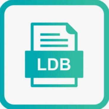 LDB file