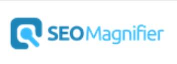SEO Magnifier Paraphrasing Tool