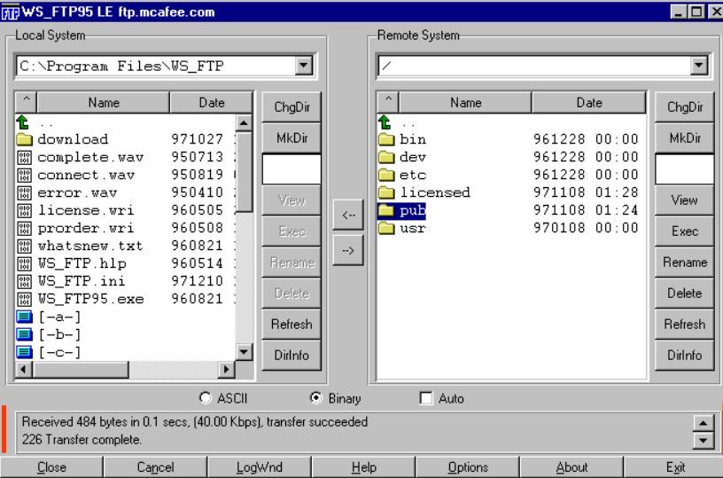Using a GUI FTP client
