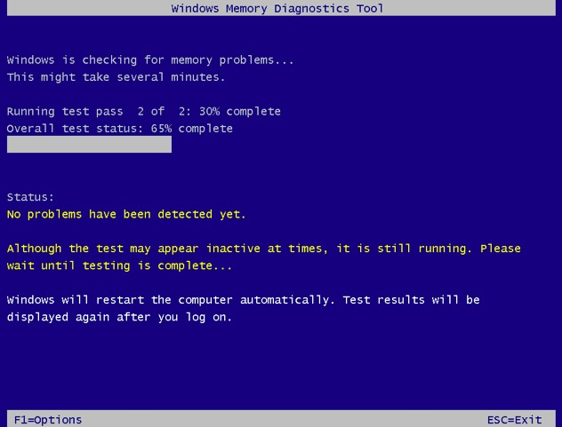 displaying Windows Memory Diagnostic Tool  with some progression