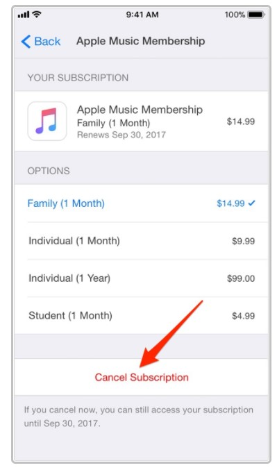 Stopping iTunes Charges By Cancelling Subscriptions