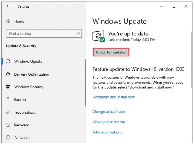 Update Windows1