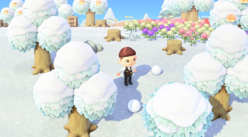 Getting a Snowball in Animal Crossing. Here's the Guides