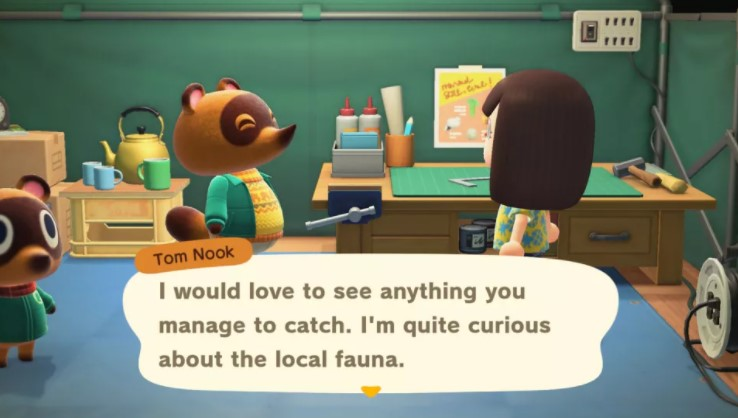 Give five bugs or fish to Tom Nook at Residents' Services