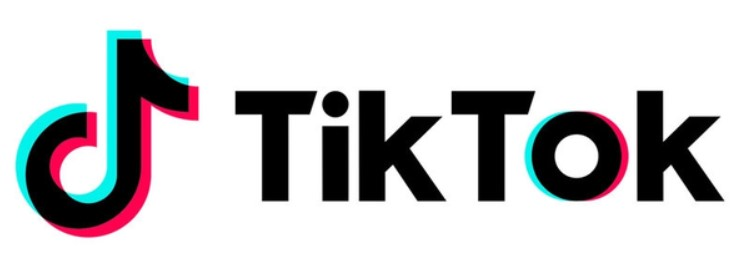 How Much Do Tiktokers Make Per 1000 Views