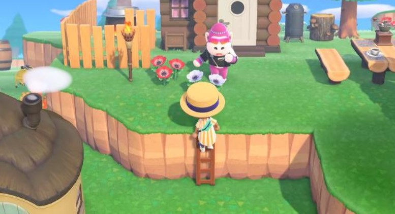 Is there a way to get the ladder as fast as possible in Animal Crossing