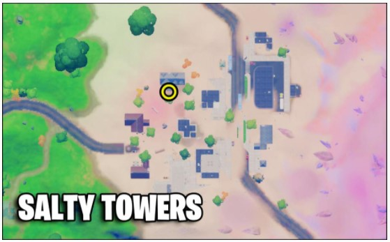 Salty Towers