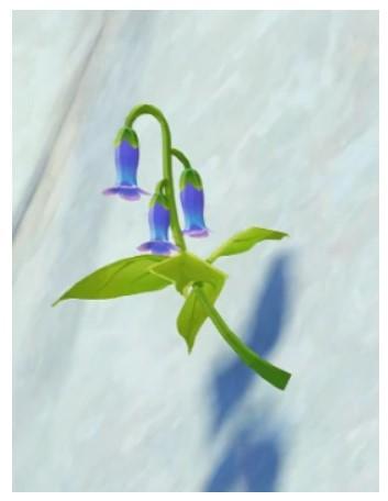 Violetgrass Genshin Impact