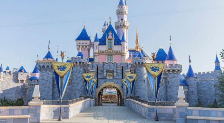 Zoom background Disney Parks