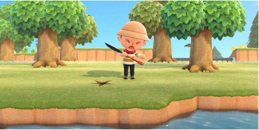 able to bury their turnips in Animal Crossing