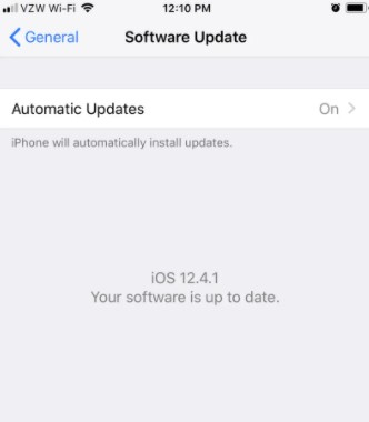tap the Automatic Updates