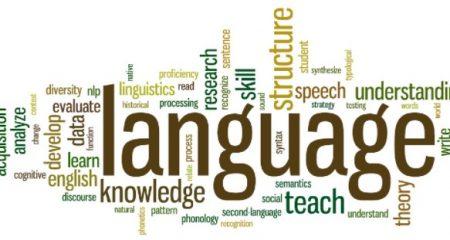Bing Language Quiz1
