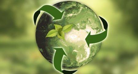 Bing Quiz Recycling1