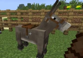 Donkeys horse minicraft