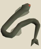 Sacred Eels