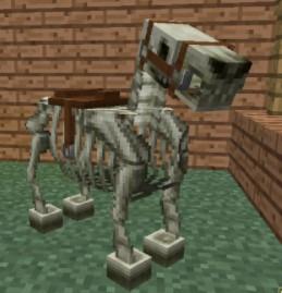 Skeleton Horses