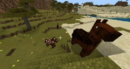 The Fastest Horses in Minecraft