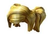 Honey Blonde Ponytail