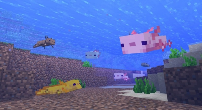 How to Tame an Axolotl in Minecraft