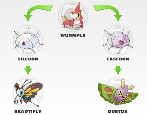 What Level Does Wurmple Evolve at1