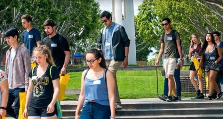 CSULB Acceptance Rate Transfer