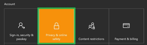 Privacy and Online Safety option and click on it